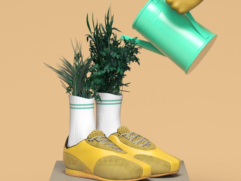 plantas_pies_vert